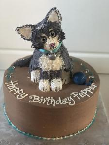 Birthday cake, cat, kitten, chocolate, buttercream