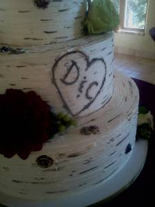 Wedding cake, tiered cake, buttercream cake, aspen tree cake, birch tree cake, bridal cake, denver, colorado