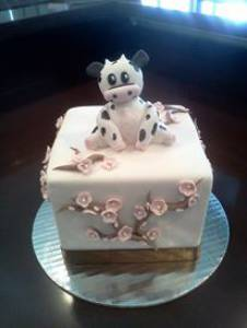 Square cake, cow cake, cherry blossom cake, birthday cake, custom cake, shaped cake, denver colorado