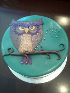Owl, fondant cake, custom cake, birthday cake, denver, colorado, teal