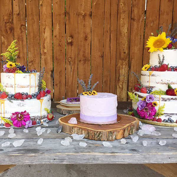 Custom Cakes in Denver Colorado Custom Wedding Cakes Custom